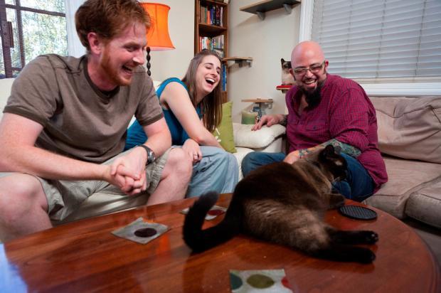 'Meu Gato Endiabrado' estreia no Animal Planet Animal Planet, divulgação/