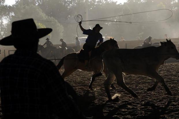 23º Rodeio de Vila Oliva encerra neste domingo em Caxias do Sul Daniela Xu/Agencia RBS