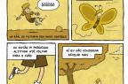 Cartunista gaúcho Rafael Corrêa conta em quadrinhos como convive com a esclerose múltipla Rafael Corrêa/Memórias de um Esclerosado