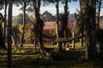 Veja fotos do livro Os Guarani Mbyá