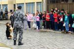 Educação em pauta: Cipave aposta na prevenção da violência escolar