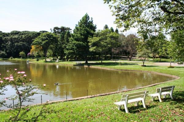 Projeto tenta mapear espécies de árvores e animais do Parque dos Pinheiros, em Farroupilha Divulgação/Assessoria de Imprensa da Prefeitura de Farroupilha