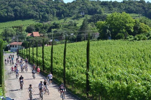 Passeio Ciclístico da Primavera movimenta o Vale dos Vinhedos neste domingo Rosângela Longhi/divulgação
