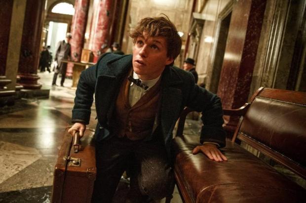 """A magia está de volta com """"Animais Fantásticos e Onde Habitam"""" Warner Bros./Divulgação"""