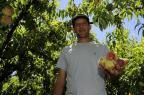 Produtores comemoram colheita na Serra Marcelo Casagrande/Agencia RBS