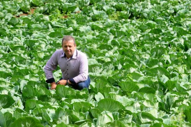 Eleito para a Câmara de Caxias, Velocino Uez vai dedicar-se à agricultura Roni Rigon/Agencia RBS