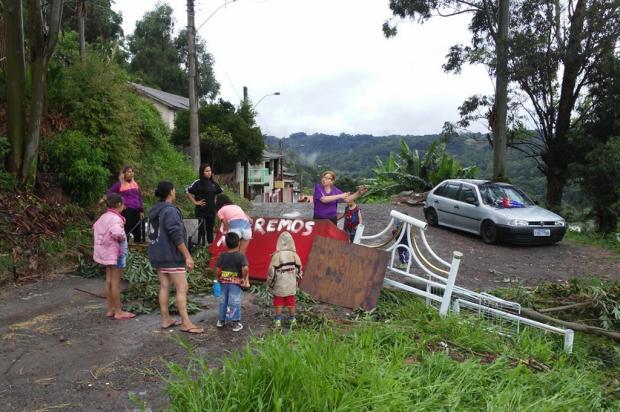 Após queda de árvore, moradores bloqueiam rua no Vale da Esperança, em Caxias Divulgação/
