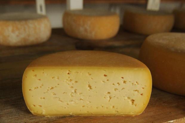 Produtores de queijo serrano artesanal comemoram lei que regulamenta atividade Diogo Sallaberry/Agencia RBS