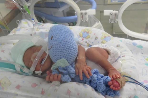 Polvos de crochê ajudam a acolher recém-nascidos na UTI neonatal do HG, em Caxias Elisângela Dewes/Divulgação