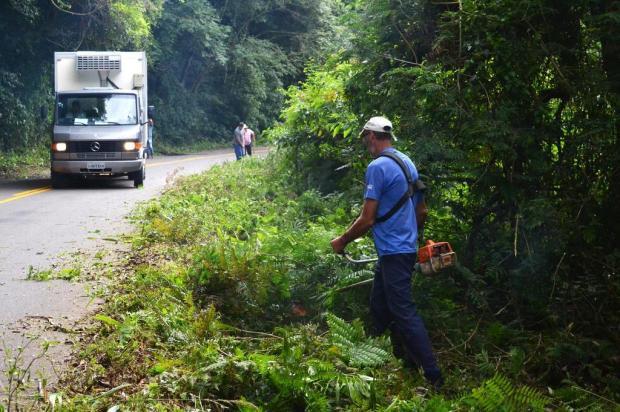 Moradores de Nova Roma do Sul fazem roçada voluntária na ERS-448 Júnior Lodi/Divulgação