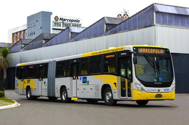Marcopolo, de Caxias, vende lote de 66 ônibus ao mercado nacional Douglas de Souza Melo/divulgação