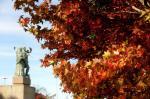 Outono em Caxias