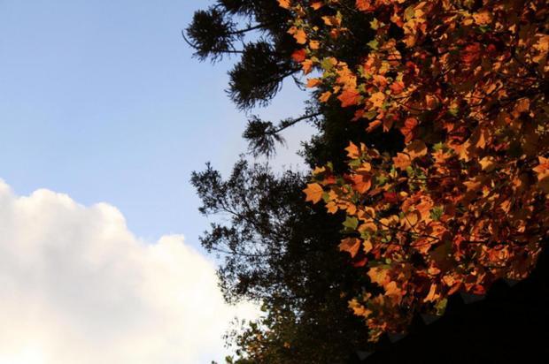 Sol entre nuvens predomina nesta terça-feira nas cidades da Serra Stefani Waltrick/divulgação