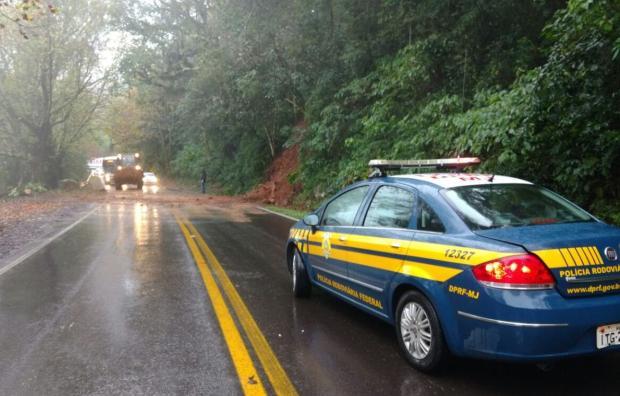 Queda de árvore bloqueia BR-116, em Nova Petrópolis PRF / divulgação/divulgação