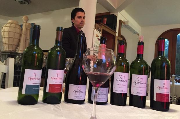 Vale Central do Estado investe no plantio de uvas e na produção de vinhos, espumantes e sucos de uvas Diego Adami/Agência RBS