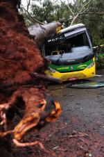 Temporal causa prejuízos na Serra