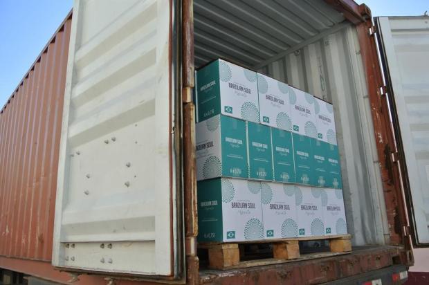 Aurora, de Bento Gonçalves, fecha nova exportação para a China aurora/Divulgação