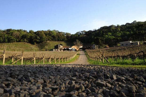 Caxias do Sul não recebe recursos para o turismo desde 2013 Marcelo Casagrande/Agencia RBS