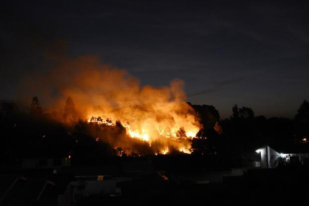 Incêndio atinge matagal em Caxias do Sul Jackson Cardoso / Divulgação/Divulgação