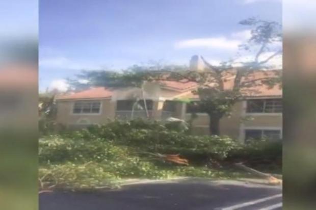 Em vídeo, caxiense mostra a força do furacão Irma na Flórida reprodução/reprodução