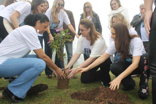 3por4: Terceiro Encontro de Misses Brasil ocorreu no sábado, em Gramado Manuela Teixeira/Divulgação