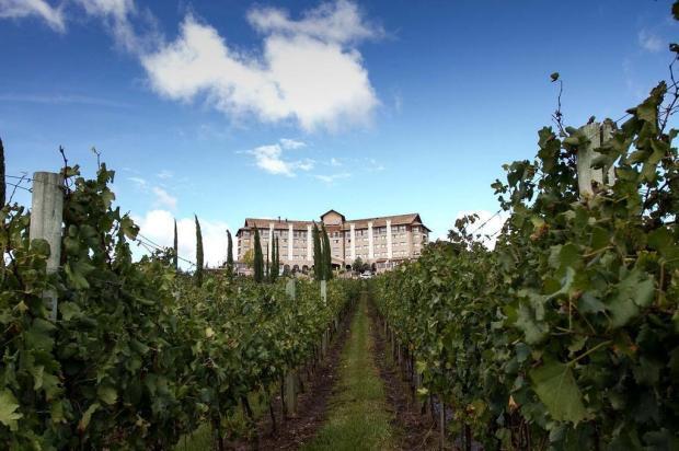 Spa do Vinho será revitalizado, num investimento de R$ 5 milhões Mell Helade/divulgação