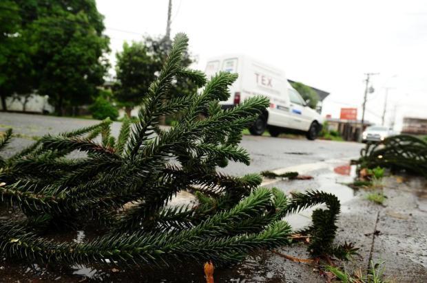 Chuva deixa bairros de Caxias do Sul sem luz e água Diogo Sallaberry/Agencia RBS