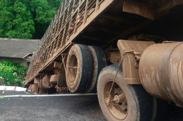 Caminhão carregado de suínos invade residência em Antônio Prado Bombeiros Voluntários de Antônio Prado / Divulgação/Divulgação