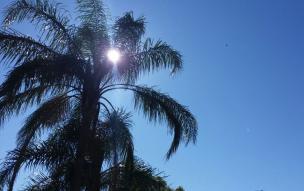 Cidades da Serra registram mínimas próximas a 1°C no amanhecer desta segunda-feira (Alana Fernandes / Agência RBS/Agência RBS)