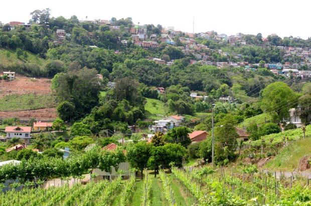 Futuro do Vale dos Vinhedos, na Serra, anima empreendedores e preocupa especialistas  Roni Rigon/Agencia RBS