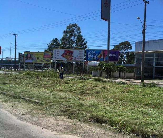 Empresa contratada pelo DAER faz roçada na RS-453, em Caxias do Sul Suelen Mapelli/Agência RBS