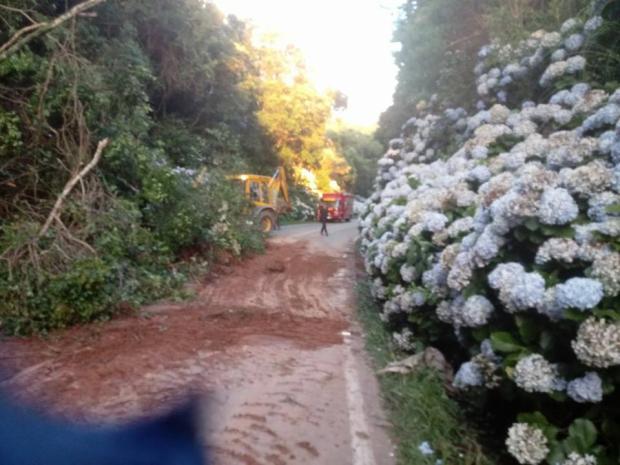Desmoronamento de terra causa bloqueio de trânsito na ERS-020, em São Francisco de Paula Corpo de Bombeiros de São Francisco de Paula / Divulgação/Divulgação
