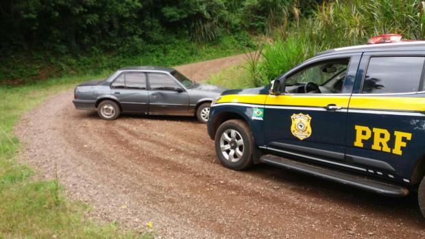 Ao fugir da polícia, homem atropela pavão e é preso em Nova Petrópolis PRF / Divulgação/Divulgação