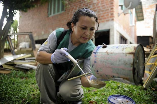 Cuidados contra o Aedes aegypti devem ser redobrados no verão Marcelo Casagrande/Agencia RBS