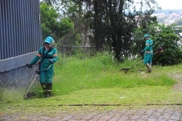 Equipes de roçada não dão conta de mato alto em ruas e rodovias de Caxias do Sul Porthus Junior/Agencia RBS