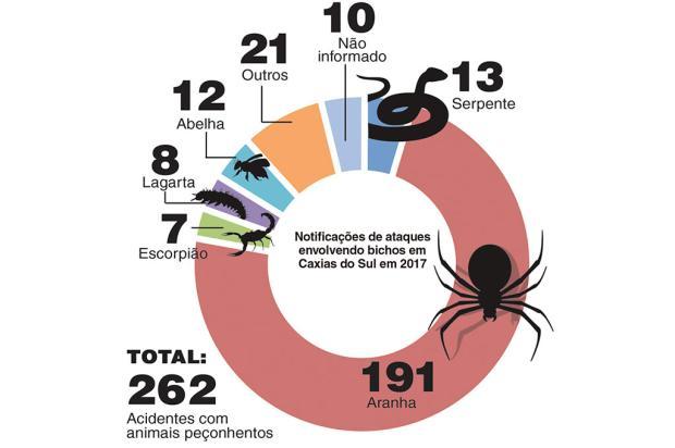 Saiba como se prevenir de acidentes com aranhas, serpentes e escorpiões Arte / Pioneiro/Pioneiro