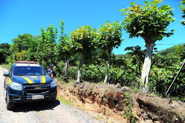 Confira o que bombou nesta quinta-feira na Serra Porthus Junior/Agencia RBS