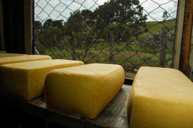 Decreto estadual que regulamenta o queijo Serrano está em vigor Divulgação/Emater