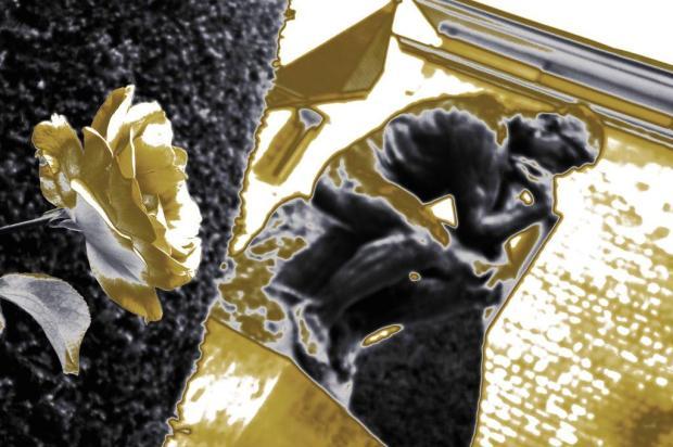 Galeria Arte Quadros, em Caxias, lança vitrine conceito nesta quarta Reprodução/Reprodução
