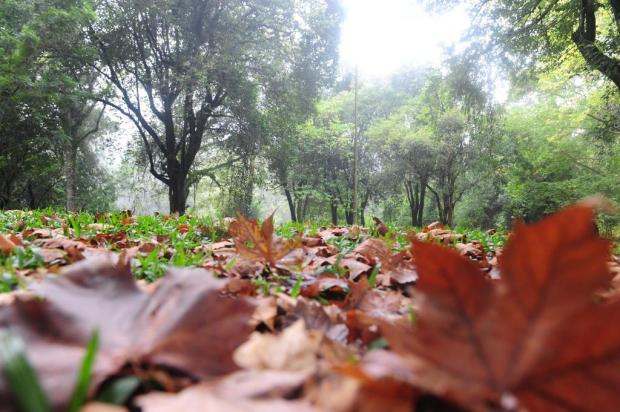 Outono na Serra Gaúcha terá veranico em maio e chance de neve em junho Roni Rigon/Agencia RBS