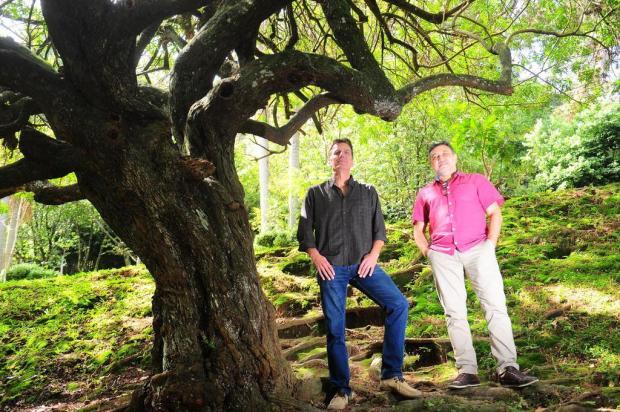 """Livro """"A Árvore de Colher Estrelas"""" será lançado na sexta-feira, em Caxias do Sul Porthus Junior/Agencia RBS"""