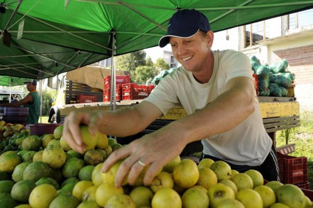 Mercado caxiense atrai produtores de orgânicos de diferentes regiões do Estado Marcelo Casagrande/Agencia RBS