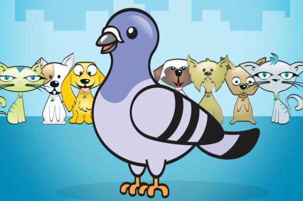 Concurso irá escolher nome da pombinha da Soama Reprodução/Agência 42,Divulgação