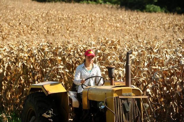 Conheça a rainha da Festa da Colônia que trabalha no plantio do milho em Gramado Diogo Sallaberry/Agencia RBS