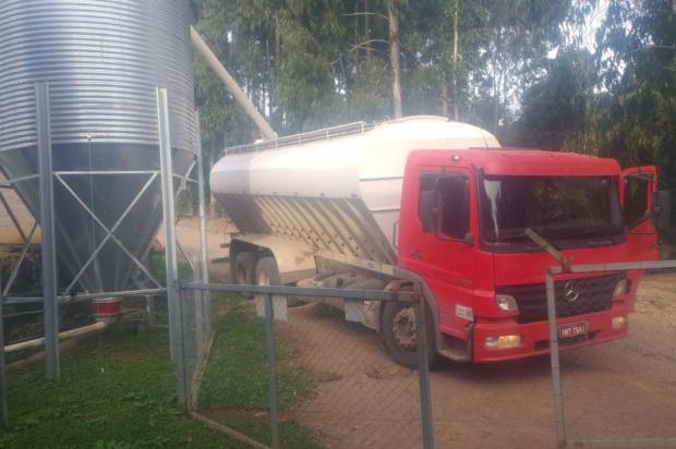 Produtores da Terceira Légua, em Caxias, recebem ração para frangos Giovani Sirtoli/Divulgação