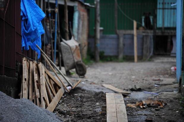 Queda de fiação mata cachorra e impede saída de famílias de moradias no bairro Primeiro de Maio, em Caxias do Sul Felipe Nyland/Agencia RBS