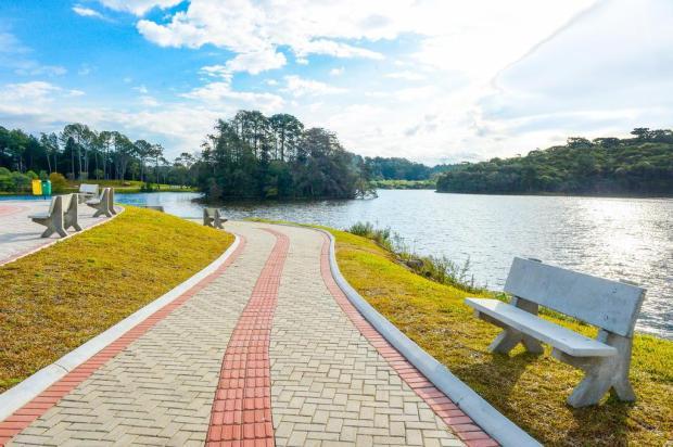 Área de lazer junto ao complexo Dal Bó, em Caxias do Sul, irá se chamar Parque das Araucárias Mateus Argenta/Divulgação