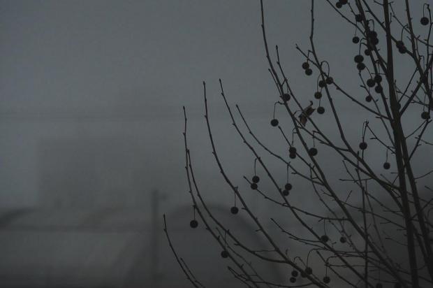 Terça-feira terá temperaturas baixas e chuva na Serra Diogo Sallaberry/Agencia RBS