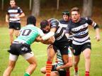 Serra Gaúcha Rugby e Farrapos fazem duelo pela liderança da Taça Ouro Letícia Hidaka/Divulgação