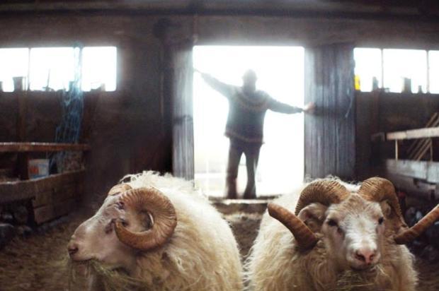 """Agenda: projeto Cine Clube exibe nesta quarta filme islandês """"A Ovelha Negra"""" no Taru, em Caxias Mostra Internacional de Cinema em São Paulo/Divulgação"""